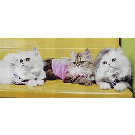 สินค้างานฝีมือ-ครอสติสลายแมวเปอร์เซีย