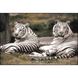 สินค้างานฝีมือ-ครอสติสลายเสือขาว II