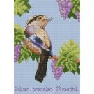 สินค้างานฝีมือ-ครอสติสลายSilver-Breast Broadbill